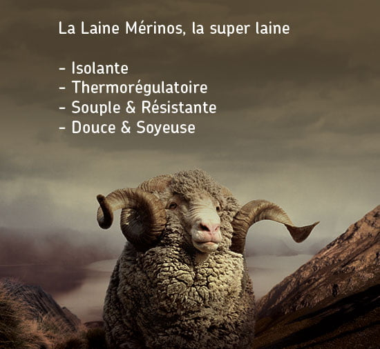 Merino_Super_Wool-fr