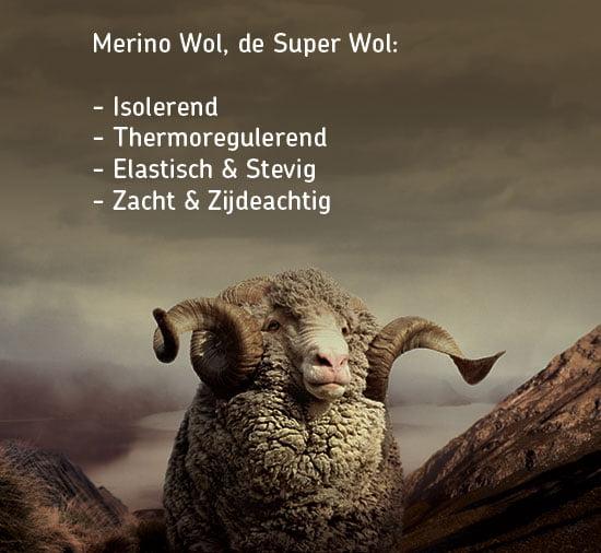 Merino_Super_Wool-nl