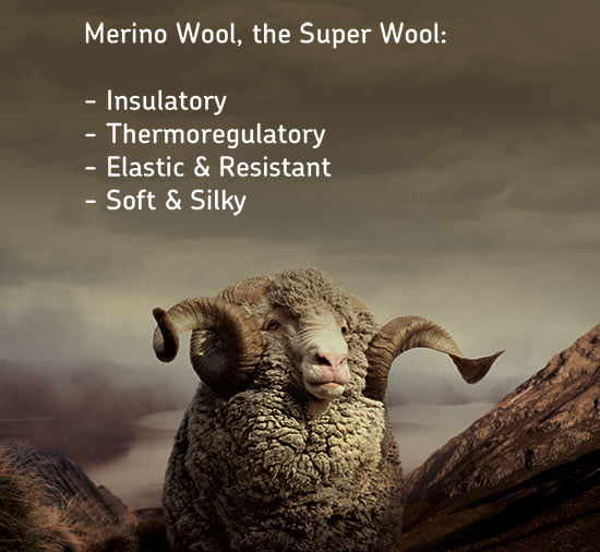Merino_Super_Wool